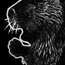 Leucism: American Beaver by NoelleMBrooks
