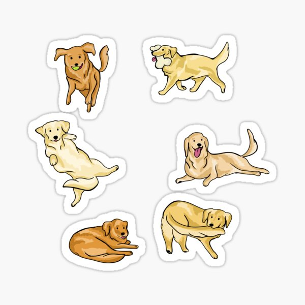 Golden Retrievers Pegatina