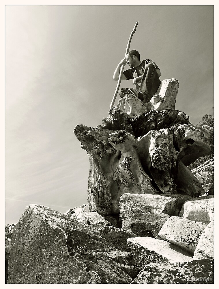 Wizzard of rocks by bbtomas