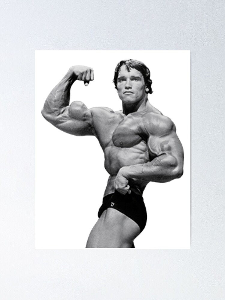 """""""Arnold Schwarzenegger"""" Poster by Claire-C 