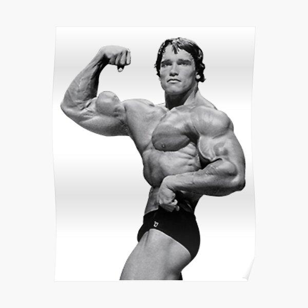 Arnold Schwarzenegger Póster