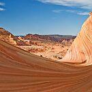 Desert Surf by Robert C Richmond