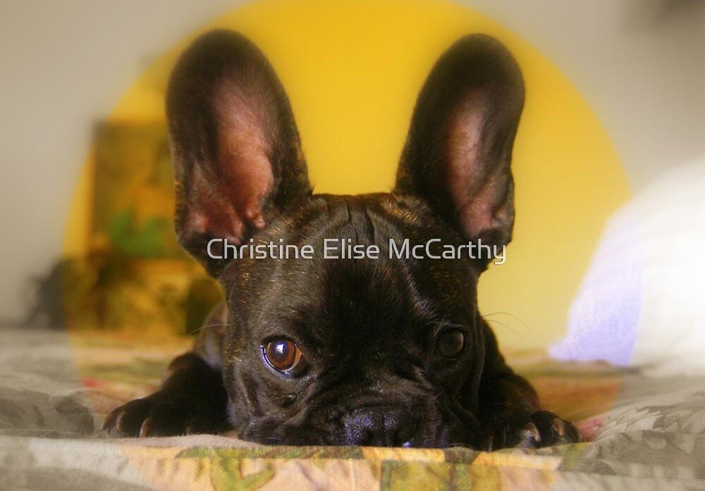 I'm listening.... by Christine Elise McCarthy