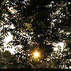 Sunrise Magic by BlueMidnight
