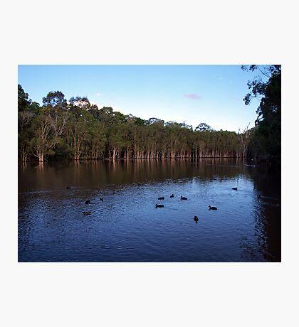 Underwood Lagoon Photographic Print