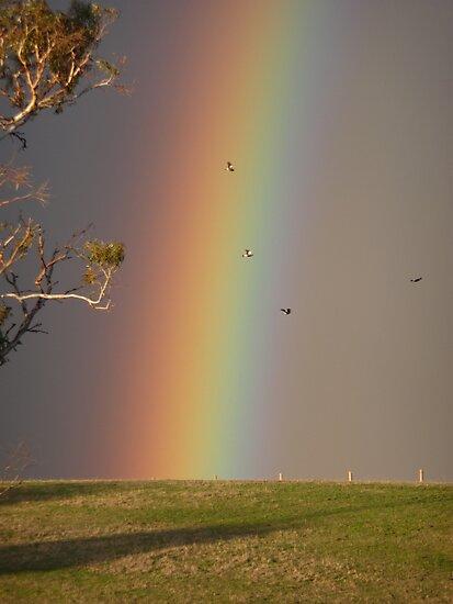 Aussie Rainbow by Georgie Hart