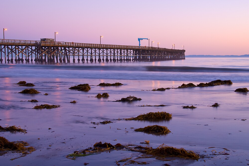 Goleta Beach Pier by Leroy Laverman