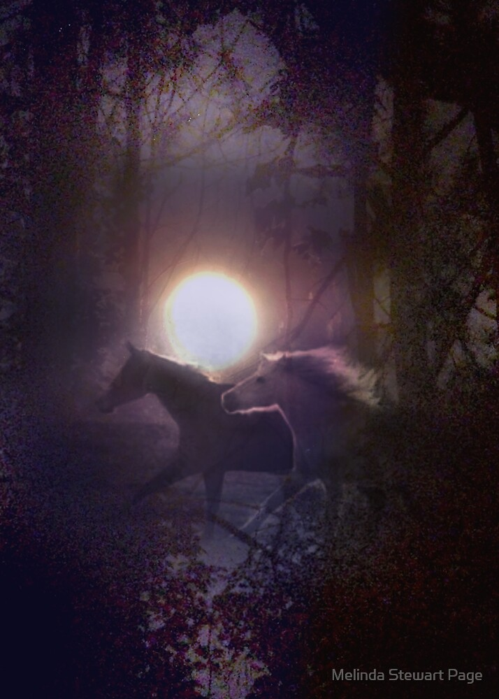 """Shadow Ponies, From My Dream"" by Melinda Stewart Page"