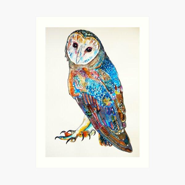 Eastern Barn Owl Art Print