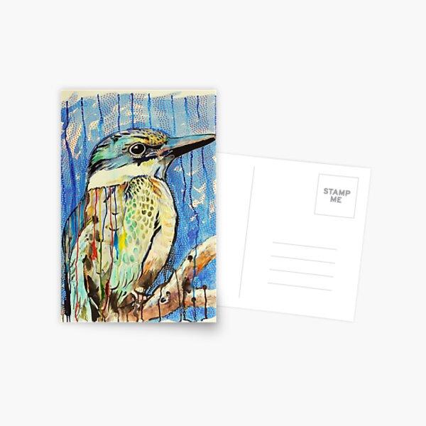 Sacred Kingfisher Postcard