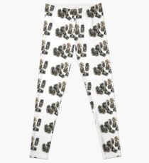 an assortment of old style film cameras        Leggings