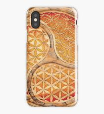 Circles of Quanta 4 (learning) iPhone Case/Skin