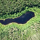 Bird's eye view of a small lake in the midst of forests by Lukasz Szczepanski