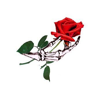 ROSE IN SKELETAL HAND by TimForder