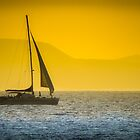 Sailing into the Sunset by Viv Thompson