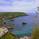 Cornwall: Looking Towards Navax Point by Rob Parsons