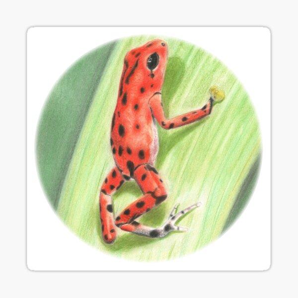 Clinging Poison Dart Frog Sticker