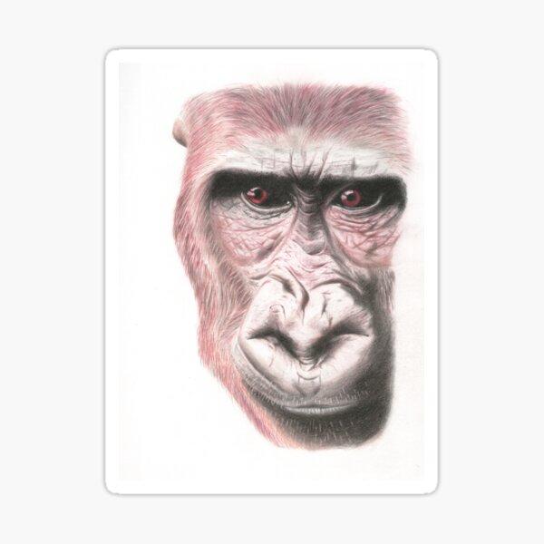 Great Ape Pencil Art Sticker