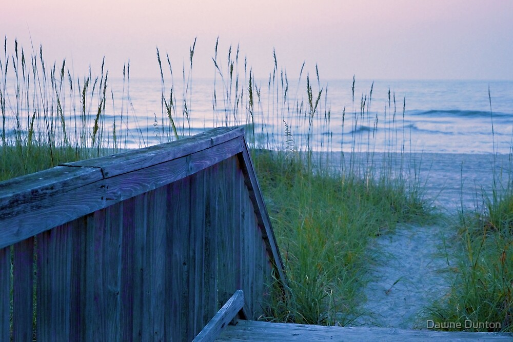 Morning Walk To The Beach by Dawne Dunton