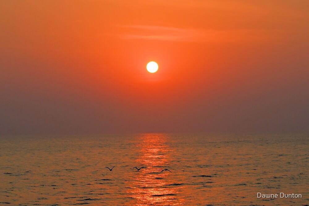 Red Dawn by Dawne Dunton