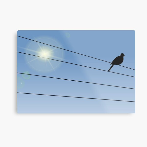 Crow Perched on Wire Metal Print