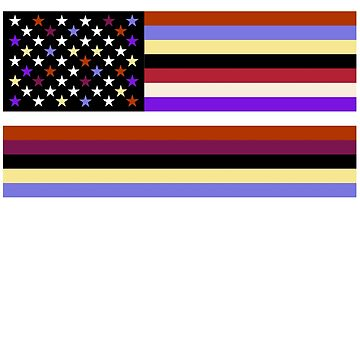 Colorful American Flag inspired by Beyonce at the Louvre and Everything is Love Album by SunFunSpring
