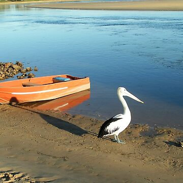 Lone Pelican by artbyjanelucas