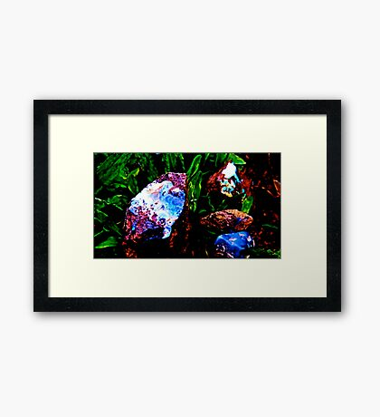 Opal In raw form  Framed Print