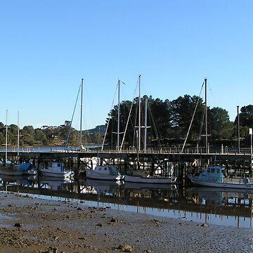 Reflections Wynyard Tasmania by artbyjanelucas