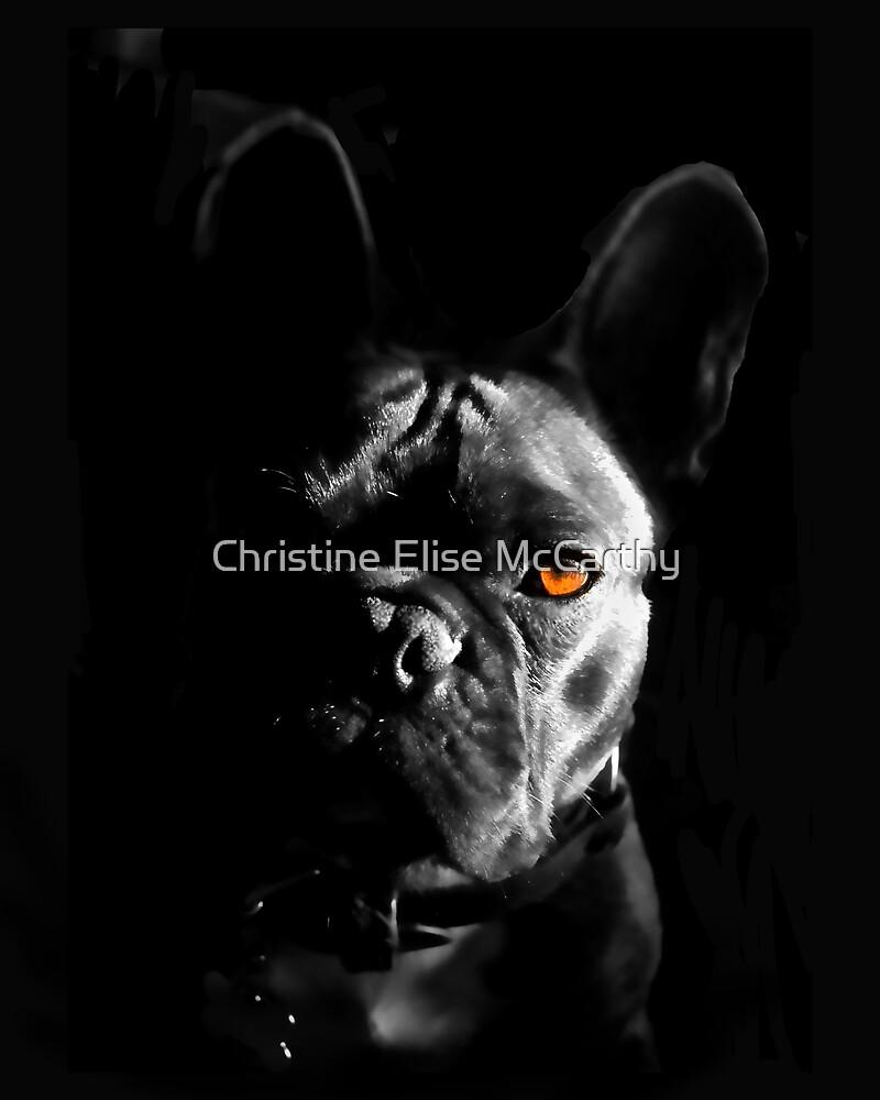 Look Deep into My Eyes.... by Christine Elise McCarthy