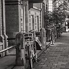 Amsterdam Bicycle in Black and White by Rachael Martin