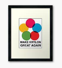 Make Krylon Great Again - Balls Framed Print