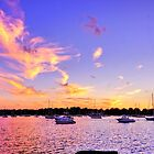 Sunset In Pink ! by Nancy Richard