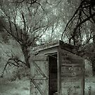Roadside Outhouse by Appel