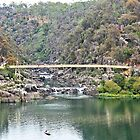 Cataract Gorge2 by Margaret Stevens