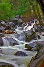 Bridal Veil Creek by photosbyflood