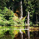June Lake, Washington by Steven Newton