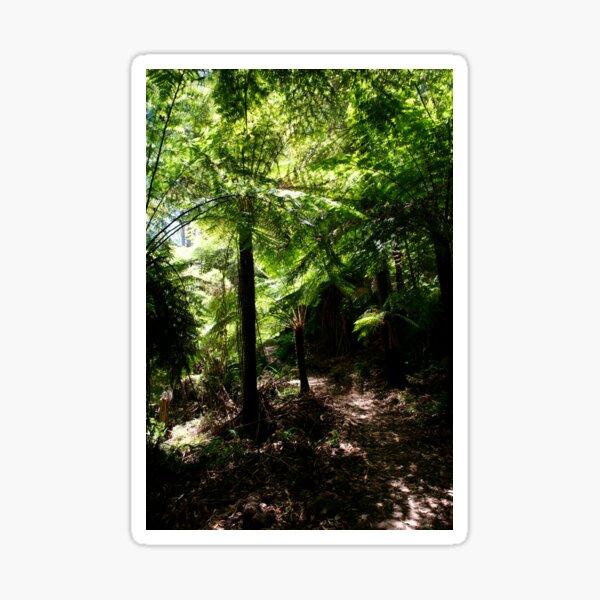 Tree Fern Canopy Sticker