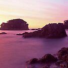 coastal warmth by Tony Middleton