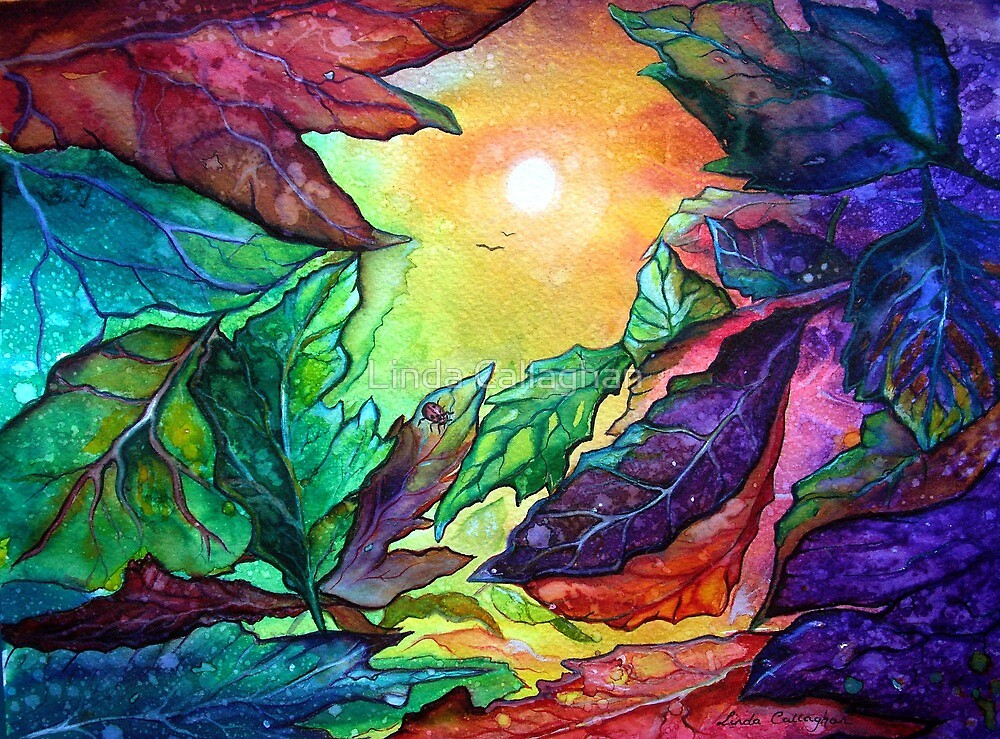 Colours of Sunshine - Leaves  by Linda Callaghan