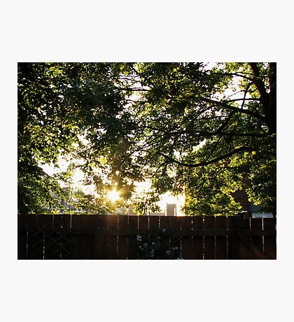 Sommer Sonnenaufgang Fotodruck