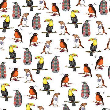 Cool birds by Elvedee