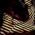 stripey daze by Juilee  Pryor