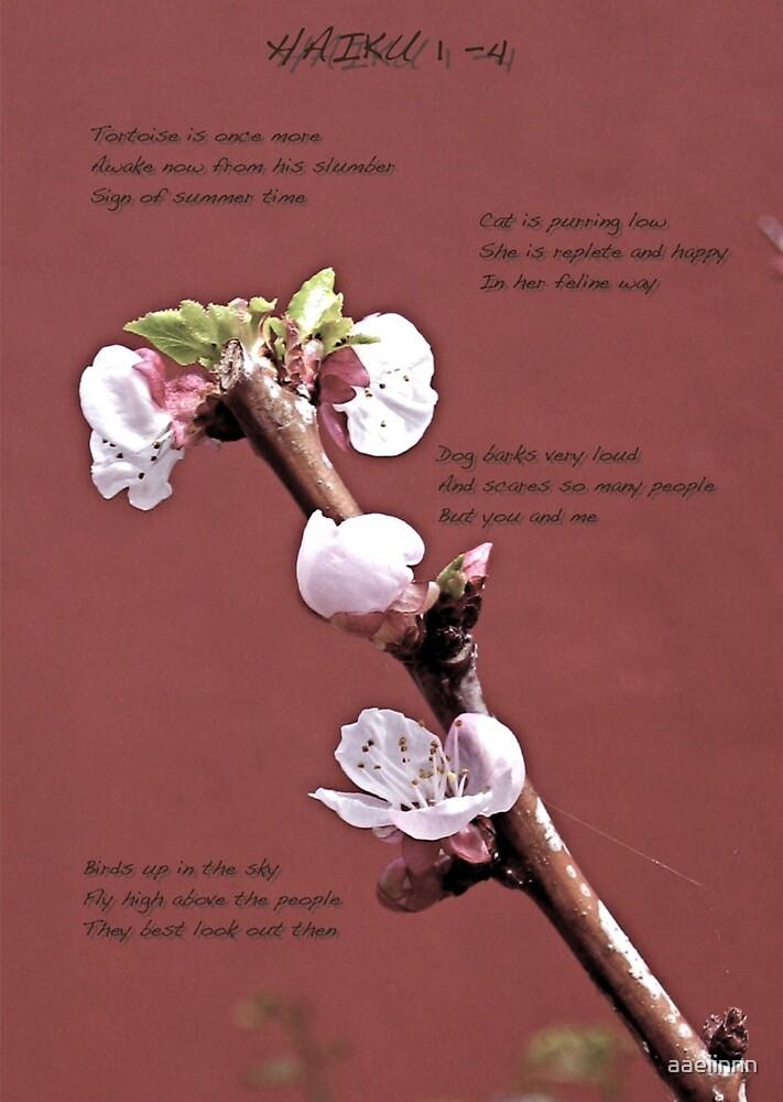 Haiku 1 - 4 by aaeiinnn