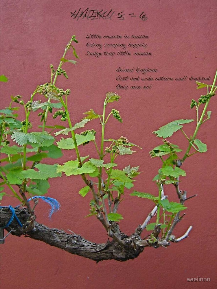 Haiku 5 - 6 by aaeiinnn