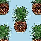 Pineapple Persian Cat by Huebucket