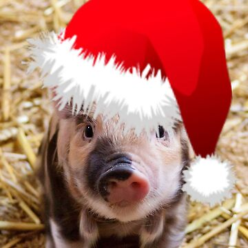 Funny Christmas Piglet  by Jamcolors