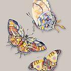 Butterflies Watercolour art by Ruta Dumalakaite