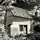 Cottage  by savosave