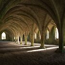 Fountains Abbey undercroft by Jon Tait